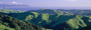 Green-Hills-of-California.jpg