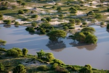 Soft-Light-on-the-Okavango.jpg